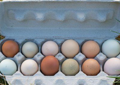 Dale's Delicious Eggs